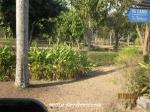 Borobudur1 (8)